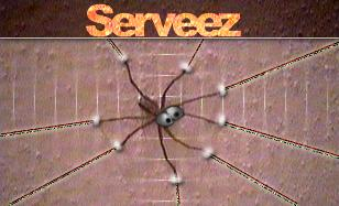 logo for serveez
